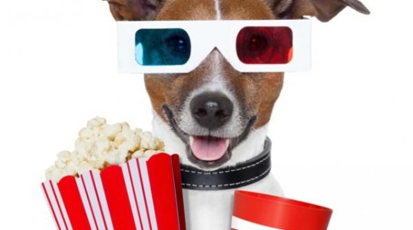 ВЛос-Анджелесе 4-5июня пройдет собачий кинофестиваль