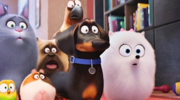 ТОП-3 лидеров российского кинопроката: «Тайная жизнь домашних животных» - чемпион