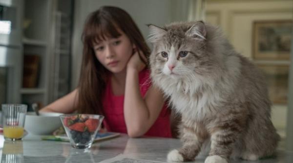 «Девять жизней» стал худшим фильмом года согласно Metacritic